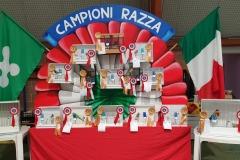 Campioni Razza